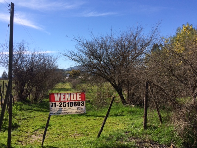 Sitio Camino a Pencahue